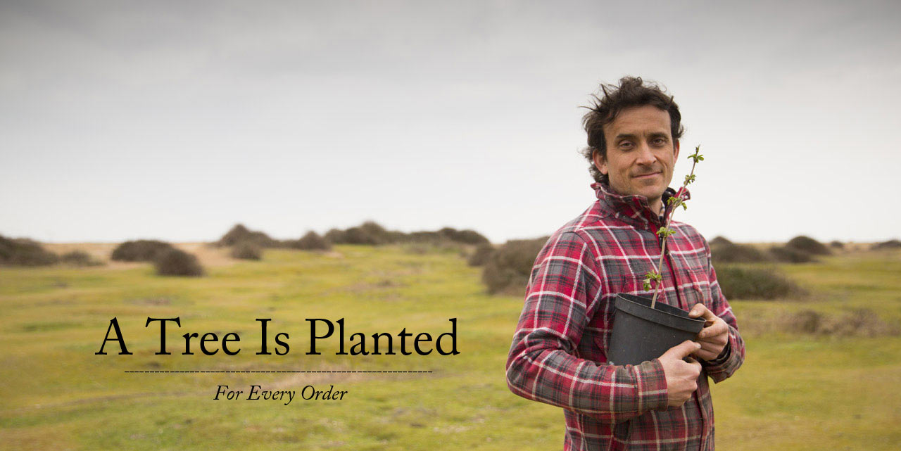A tree is planted for every order